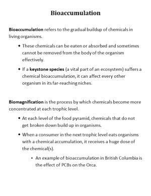 Bioaccumulation Refers to the Gradual Buildup of Chemicals in Living Organisms