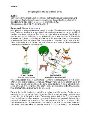 Designing Food Chains and Food Webs