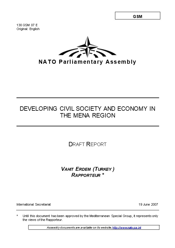 Developing Civil Society and Economy in the Mena Region