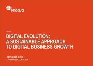 Digital Evolution: a Sustainable Approach to Digital Business Growth