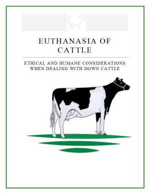 Ethical and Humane Considerations When Dealing with Down Cattle