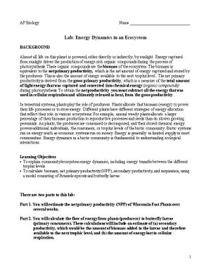 Lab: Energy Dynamics in an Ecosystem