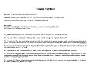 Lesson 3: What Can Be Done About Poison Hemlock?