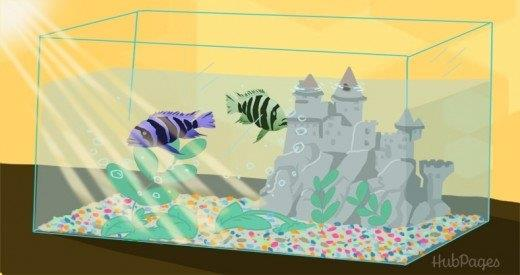 Aquariums with decorations like castles require more frequent cleaning than those with rocks