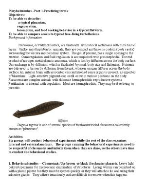 Platyhelminthes Part 1-Freeliving Forms