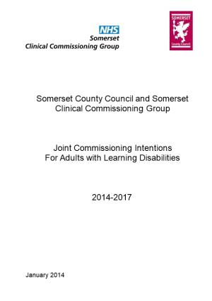 Somerset Commissioning Strategy