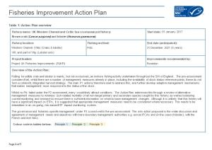 Table 1: Action Plan Overview
