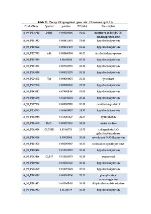 Table S1.The Top 100 Up-Regulated Genes After C1 Treatment (P<0.05)