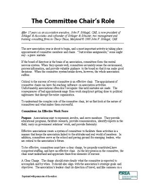 The Committee Chair S Role