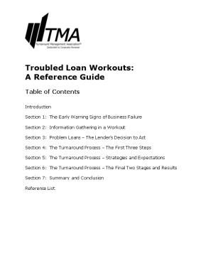 Troubled Loan Workouts