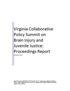 Virginia Collaborative Policy Summit on Brain Injury and Juvenile Justice Report